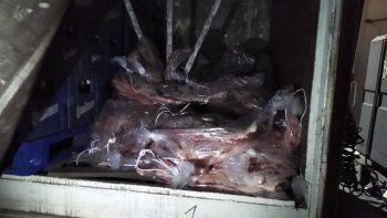 incautan 300 mil pesos en carne que venian a neuquen