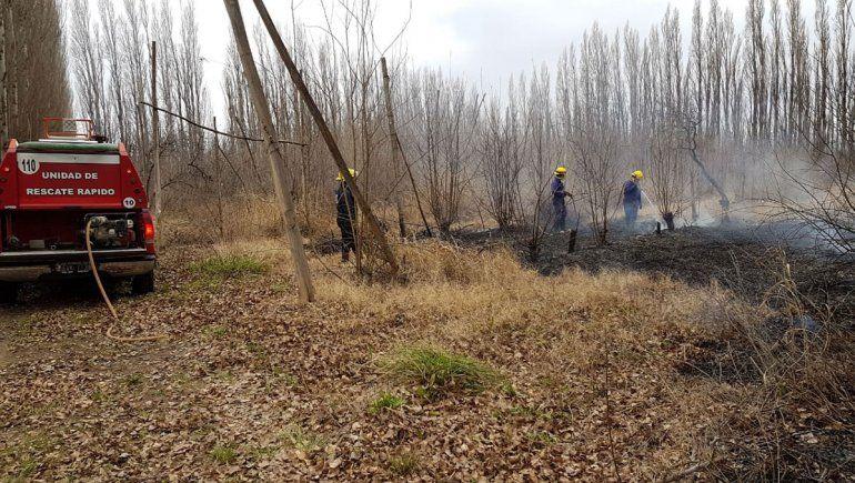 Una chacra sufrió 14 incendios y aún no saben por qué