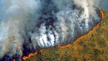 devastador: un impresionante incendio consume el amazonas