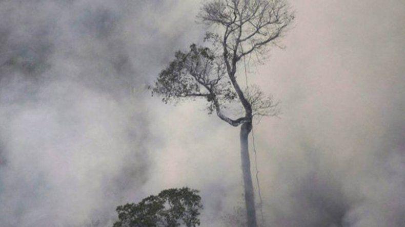 Bolsonaro enviará a las Fuerzas Armadas para combatir los incendios forestales