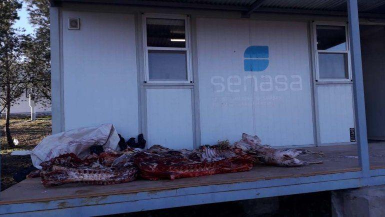 Decomisaron 260 kilos de carne que iban para Rincón