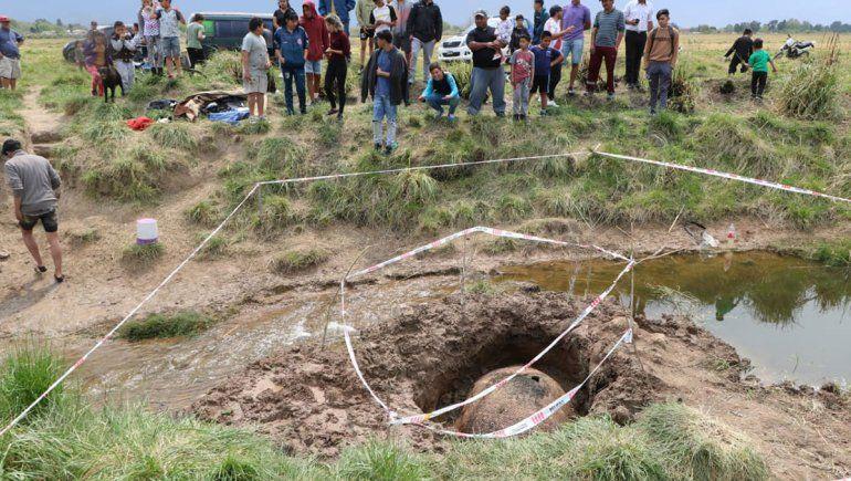 Hallaron el caparazón de un mega mamífero en Buenos Aires