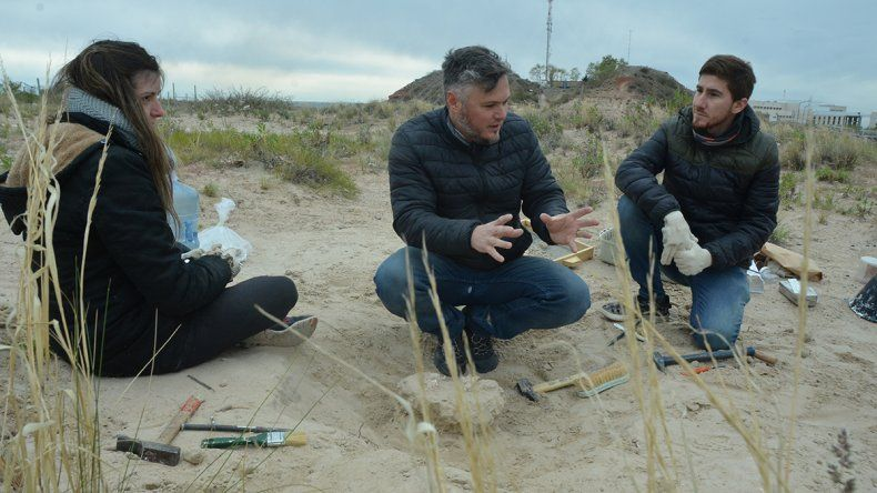 Estudiantes de la UNCo hallaron restos de un cocodrilo fosilizado