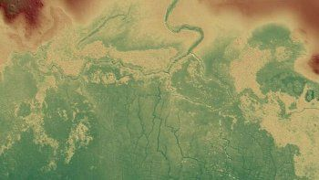 descubrieron una red de canales y cultivos mayas bajo una selva