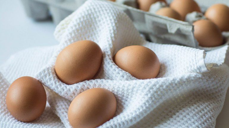 Las 10 razones por las que el huevo debe estar en la dieta diaria