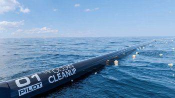 denuncia: un tubo limpia el oceano pero mata animales