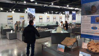el museo de zapala sumo 15.000 piezas paleontologicas