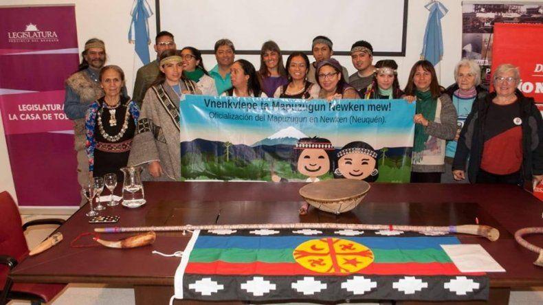 Mapuzugun: piden que la ley se trate antes de fin de año