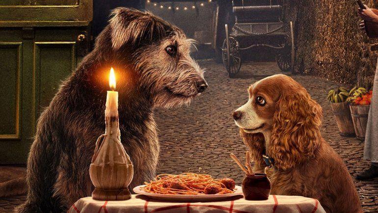 La historia de Monte, de una perrera a estrella de La dama y el vagabundo