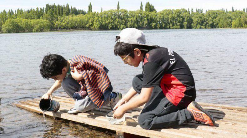 Alumnos de Plottier sembraron alevinos en el río Limay