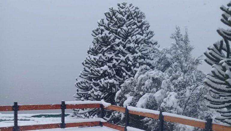 Video: un temporal de nieve cubrió de blanco a Villa Pehuenia