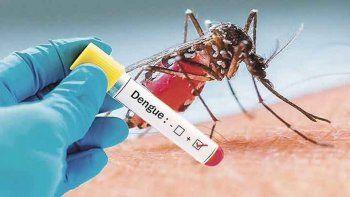 fue el ano con mas casos de dengue en america