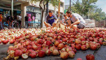 productores repartiran 3500 kilos de manzanas