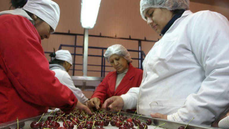Llegan inspectores chinos para certificar la fruta local