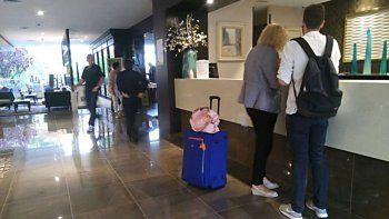 la demanda en hoteles cayo entre un 5% y 10%