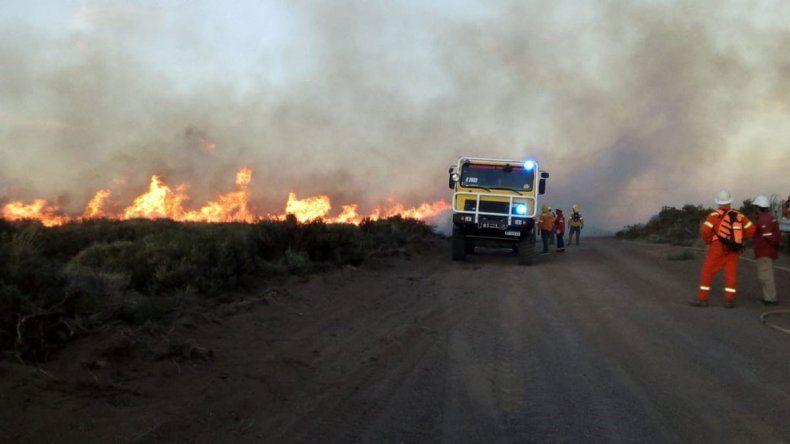 Descontrolado incendio afecta a 1200 hectáreas en forestación de Corfone en Caviahue