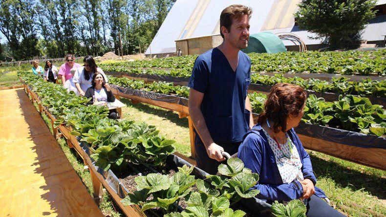 En el Puesto de Plottier todos pueden aprender a cultivar