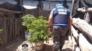 secuestran droga, armas y un botin en el chocon