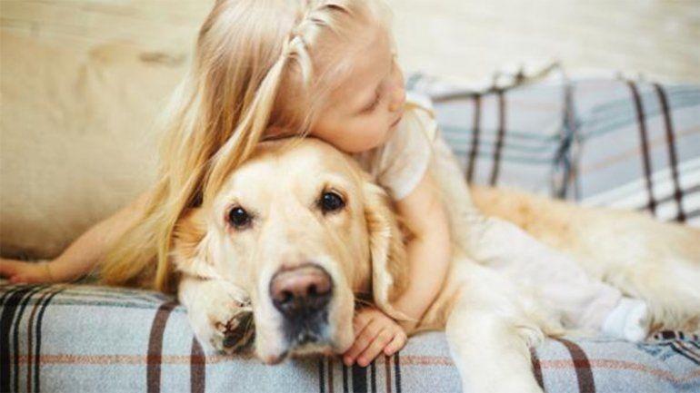 Pirotecnia: ¿cómo proteger a niños con autismo y mascotas de los fuertes estruendos?