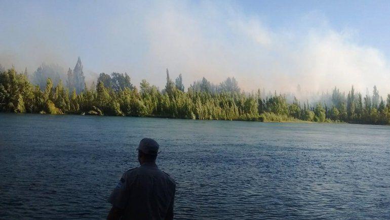 Está controlado el incendio de la isla sobre el Limay: ya afectó 5 hectáreas