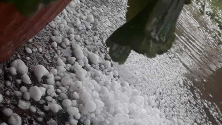 Fuerte granizada afectó un sector del cordón frutícola del Valle