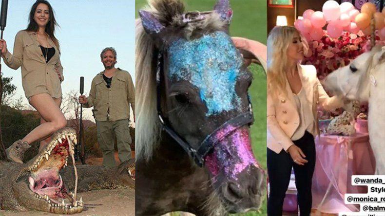 Maltrato animal VIP: de los ponys de Wanda y Blaquier, a las poses de Vanucci y Garfunkel con su presas