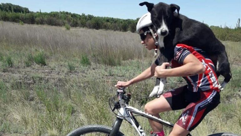 Ciclistas rescataron a un perro deshidratado
