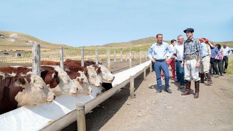 Una tarjeta del BPN para el sector agropecuario