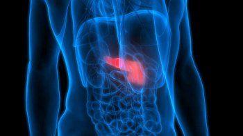 cancer: detectaron un proceso clave de la metastasis