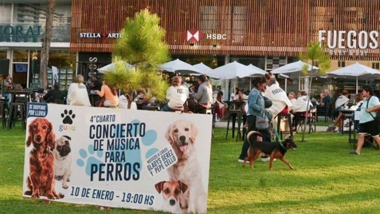 En Pinamar los perros son agasajados con conciertos