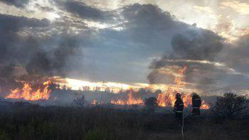 el chanar: las llamas consumieron 30 hectareas de campo