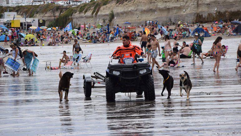 En Las Grutas encerrarán a los perros de la playa