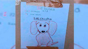 se perdio su perra y, como no tenia fotos, dibujo carteles