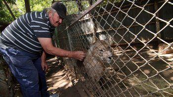 triste final: el refugio luan cerro sus puertas