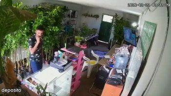 se hicieron pasar como clientes y robaron $38 mil de un vivero: mira el video