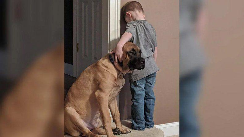 En las buenas y en las malas: un nene cumplió penitencia junto a su perro