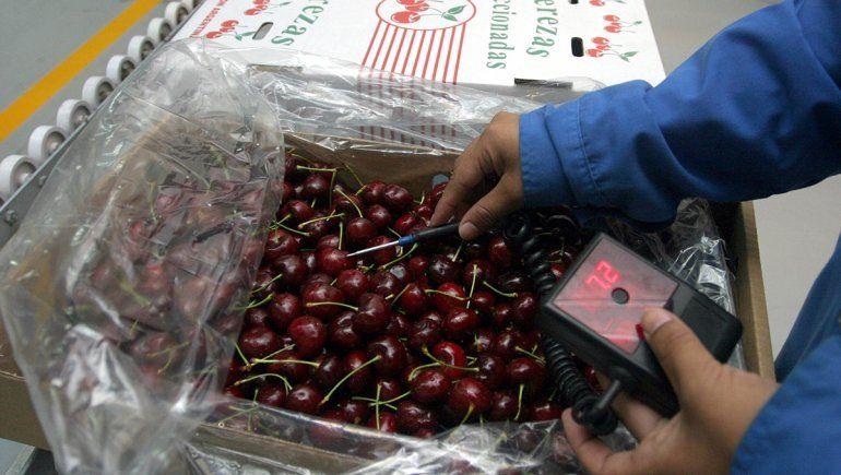La fruta regional se podrá exportar directo a China durante 2020