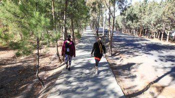 pasqualini: tenemos que peatonalizar la ciudad