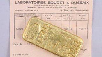 juego millonario: nenes acamparon en su patio y encontraron oro