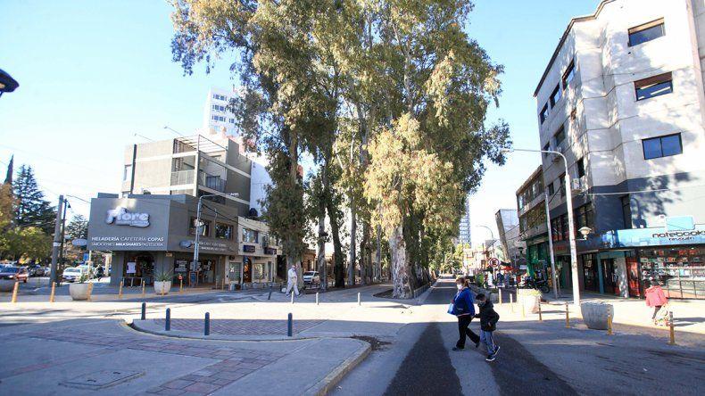 Ciudad: el defensor y la Muni se cruzaron por los eucaliptos