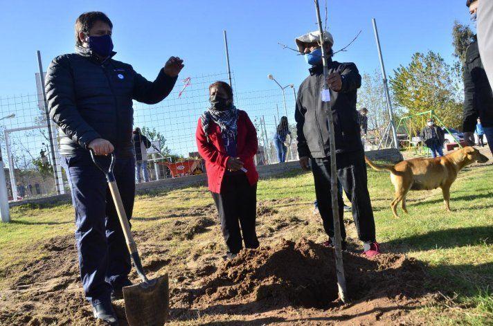 Ya se planaron más de 1600 árboles y la idea es terminar antes de la primavera.