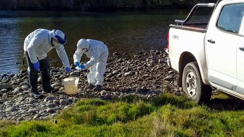 Iniciaron un monitoreo de las aguas residuales por el COVID-19