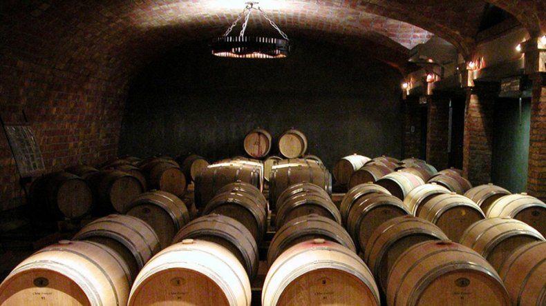 Los vinos de la Patagonia ya se defienden en Europa