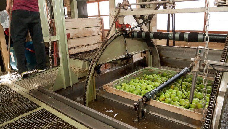 Esperan que se firme la extensión de la ley de emergencia frutícola