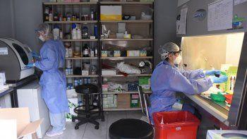 Secuenciaron 22 genomas de pacientes con coronavirus de Neuquén