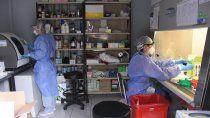 secuenciaron 22 genomas de pacientes con coronavirus de neuquen