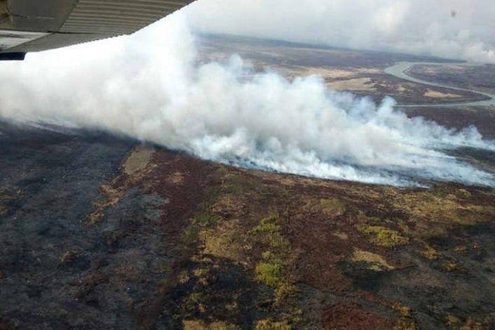Incendios en humedales del delta del Paraná