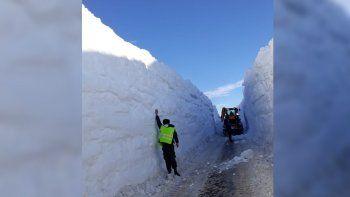 pino hachado: entre paredes de nieves continua el rescate de camiones