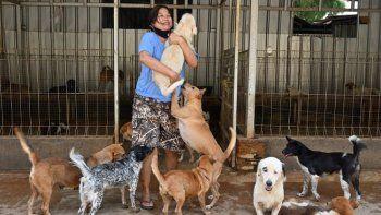 Una mujer en Indonesia rescata perros abandonados.