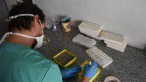 el coronavirus sumo 283 nuevos contagios y seis muertes en neuquen